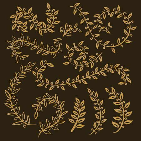 leaves set. Vector leaf, outline drawing in vintage style. Tree branches. graphic  illustration, paradise collection. Plant Gold vector, summer, spring. branch leaves gold art