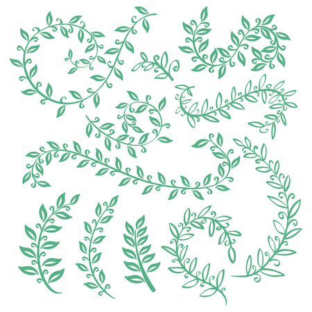 laurel leaf: Set watercolor wreaths and laurel. Hand painted green branches, leaves, leaf, petal decor elements. For design template, invitation. Hand sketched brushes texture. Nature, organic items. Vector art