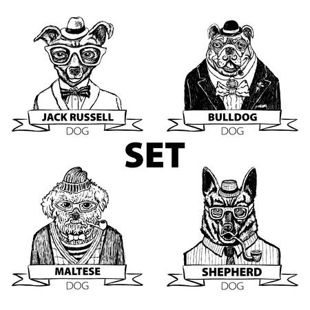 流行に敏感な動物設定犬、メガネと蝶ネクタイ ベクター アート  イラスト・ベクター素材