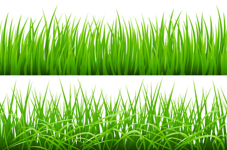 2 Backgrounds Of Green Grass, Isolated On White Background, Vector Illustration art Illustration