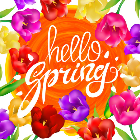 Hello spring colorful tulips flowers white background with lettering. Template for greeting post card.