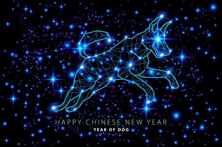 vector 2018 Happy chinese New Year of dog greeting card. abstract star sky design light cosmos. illustration art