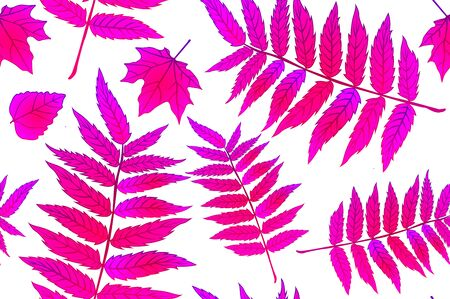 Red Autumn Leaves. Background autumn pattern sheet seamless. Pattern for the fabric. Fern print. Trend autumn pattern. Cloth shirt pattern. Vector illustration, eps 10 art
