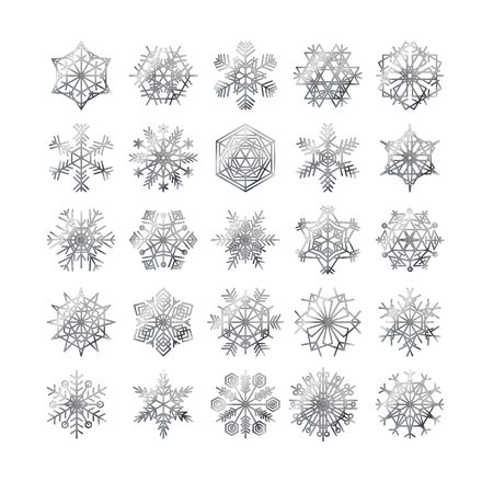 snowflake winter set of silver isolated icon silhouette on white background vector illustration