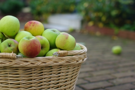 Basket with green and red apples photo