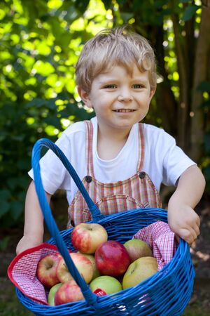 Little baby boy with basket with apples photo