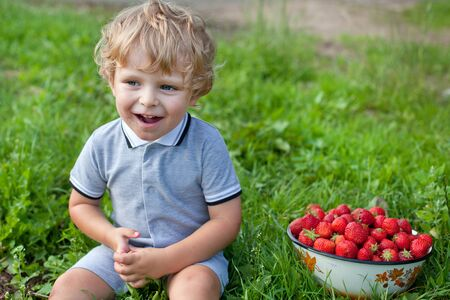Adorable toddler with bowl strawberries on organic berry farm photo