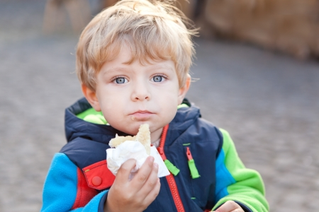 Adorable toddler eating bread outdoor autumn photo