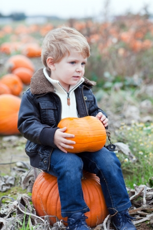 Happy little toddler boy on pumpkin field on cold autumn day