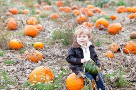 Happy little toddler boy on pumpkin field on cold autumn day photo