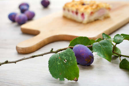 Ripe plums and fresh baked prune cake on wooden table in summer garden Stock Photo - 16038245