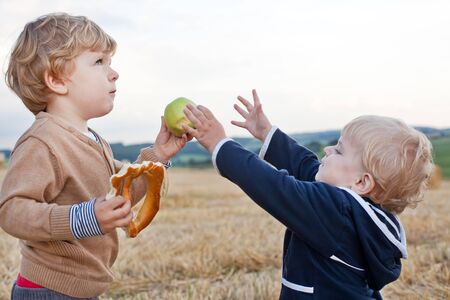 Two little toddler boys playing on straw field in summer photo