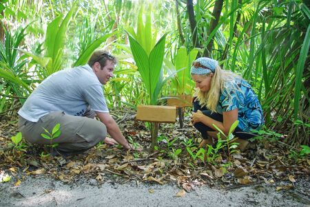 Young love couple smiling planting palm tree, Maldives photo