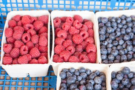 Fresh healthy bio  blueberries and raspberries on German farmer agricultural market Stock Photo - 17341492