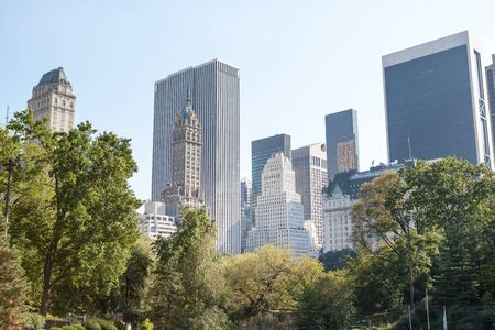 Central Park and Manhattan Skyline. Image of the midtown Manhattan skyline taken from Central Park, New York City