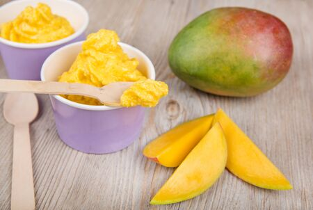 frozen joghurt: Serving of frozen homemade creamy ice yoghurt  with fresh mango and wooden spoon