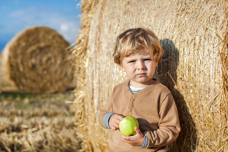Little toddler eating apple with a big hay bale on field in summer, Germany. Family making picnic on background Stock Photo - 18064530