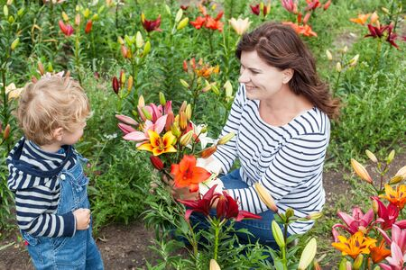 Little toddler boy and young woman on lily field in summer, Germany Stock Photo - 18267393