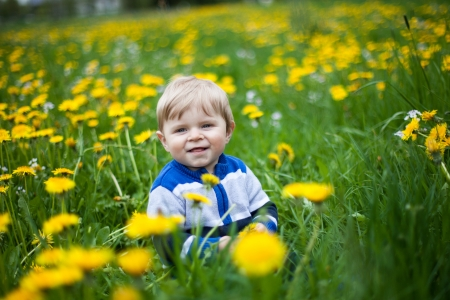Beautiful baby boy in yellow flowers field summer Stock Photo - 19098414