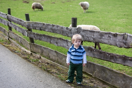 Toddler child standing in front of a wooden fence of sheep enclosure at a farm photo