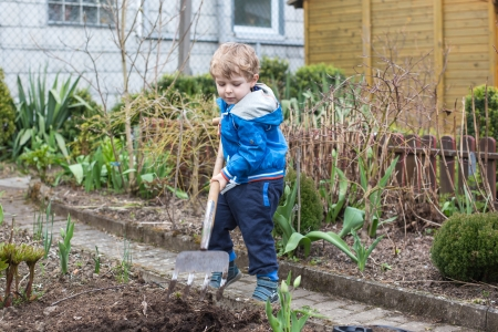 Little toddler boy working in vegetable garden