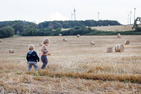 Two beautiful little toddler boys having fun on straw field in summer photo
