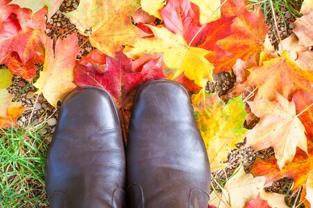 Autumn colorful red and yellow maple leaves in park with woman boots photo