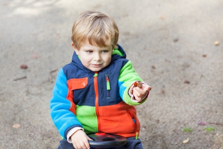 Little toddler boy in autumn park with foliage and chestnut photo