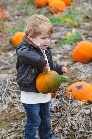Happy little toddler boy having fun on pumpkin field on cold autumn day photo