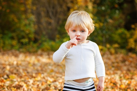Little toddler boy playing with yellow leaves in autumn park on sunny day Stock Photo - 21467664