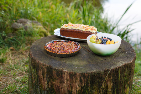 picknick: Food for picknick in nature: quiche with tomato, cake and fruits. Summer. Stock Photo