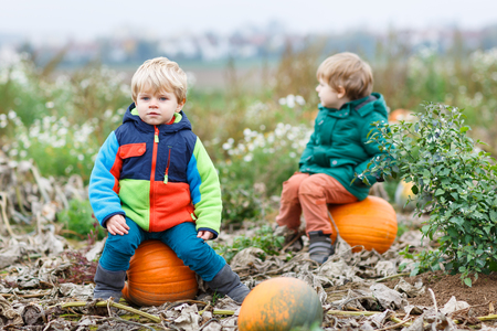 Two little siblings sitting on big pumpkin on cold autumn day. photo