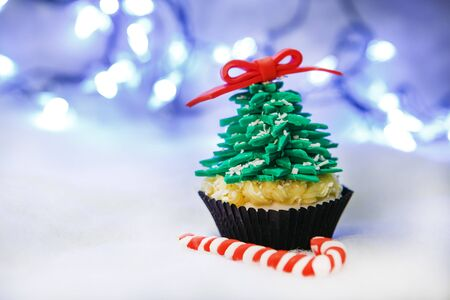 Christmas tree cupcake with white fondant Stock Photo - 24174813