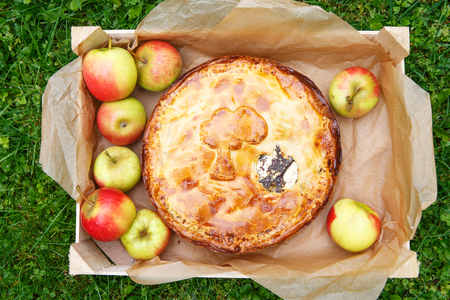 Homemade baked apple pie with poppy seeds and apples in wooden box with fresh fruits photo