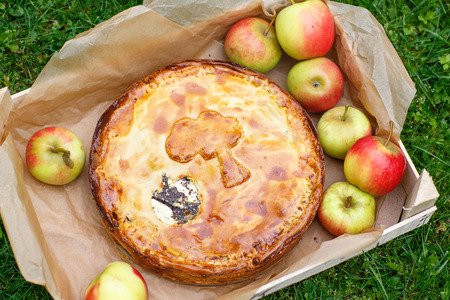 Fresh baked apple pie with poppy seeds and apples photo