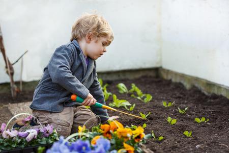 정원에서 정원 식물과 꽃을 심는 어린 소년