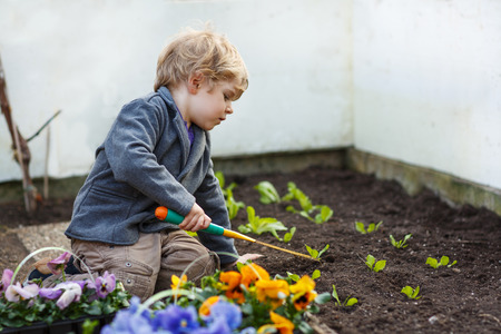 Little boy gardening and planting vegetable plants and flowers in garden
