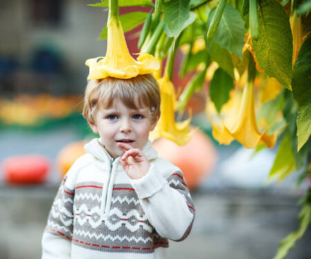Funny little boy with big yellow flower as a cap on pumpkin patch on farm