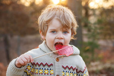 Little caucasian toddler boy of two years eating big candy , outdoors photo