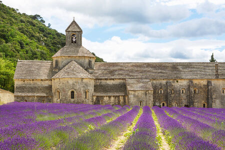the luberon: Abbey of Senanque and blooming rows lavender flowers. Gordes, Luberon, Vaucluse, Provence, France, Europe. Editorial