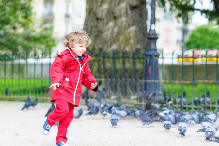 4 of a kind: Cute little blond boy catching and playing with pigeons on a city place