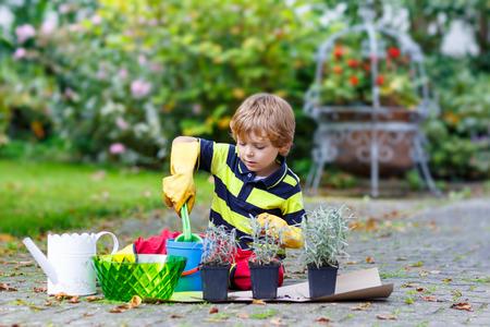 Poco de aprendizaje Muchacho divertido para plantar flores en el jardín o la granja de su casa, en cálido día soleado. Aire libre. Concepto de medio ambiente. Foto de archivo - 35193910