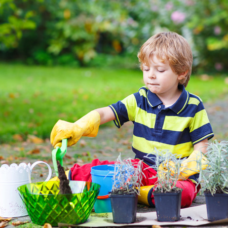 3 4 years: cute kid boy learning to plant flowers in homes garden or farm, on warm sunny day. Outdoors. Environment concept.