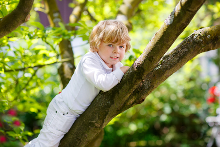 domestic garden: Cute little kid boy enjoying climbing on tree. Toddler child learning to climb, having fun in domestic garden on warm sunny day. Stock Photo