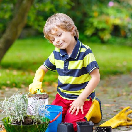 3 4 years: Adorable little blond boy of 3 or 4 years gardening and planting flowers in homes garden or farm, on warm sunny day. Outdoors. Environment concept.