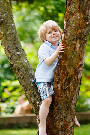 domestic garden: Funny little kid boy enjoying climbing on tree. Toddler child learning to climb, having fun in domestic garden on warm sunny day.
