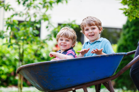 domestic garden: Two blond little sibling boys having fun in a wheelbarrow pushing by dad in domestic garden, on warm sunny day. Active outdoors games for kids in summer.