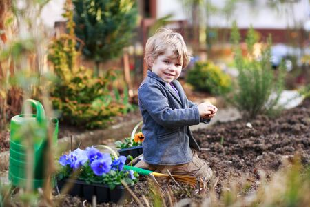 family gardening: Blond boy of 2 years having fun with gardening and planting vegetable plants and flowers in garden, outdoors Stock Photo