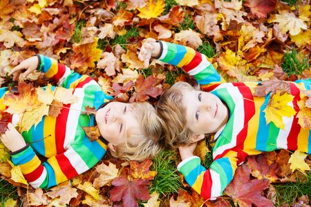 lying on leaves: Two blond boys lying in autumn leaves in colorful clothing. Happy siblings having fun in autumn park on warm day.