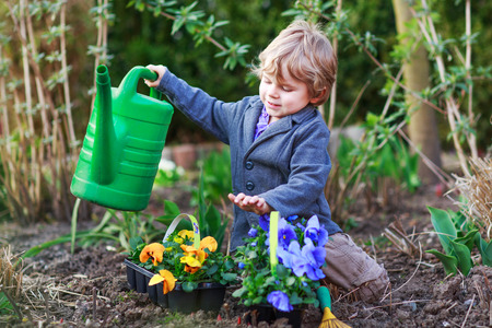 plant seed: Toddler boy of 2 gardening and planting vegetable plants and flowers in garden, outdoors